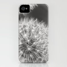 Dandelion Wishes Slim Case iPhone (4, 4s)