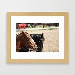 Black & Brown Horses Framed Art Print
