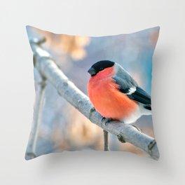 Wonderful Stunning Bullfinch Relaxing On Tree Branch Close Up Ultra HD Throw Pillow
