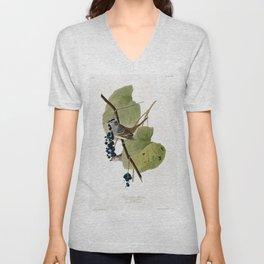 White-crowned Sparrow Unisex V-Neck