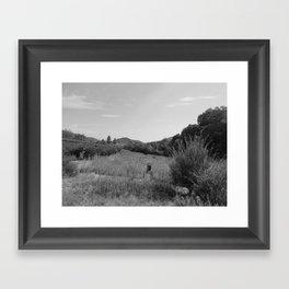 OAK GLEN (B+W) Framed Art Print