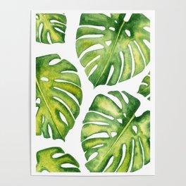 Monstera deliciosa pattern in watercolor Poster