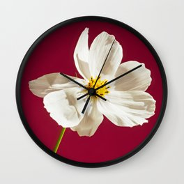 Macro fresh pink flower over red background Wall Clock