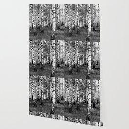 Birches 1 Wallpaper