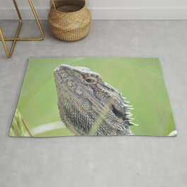 bearded dragon. Rug