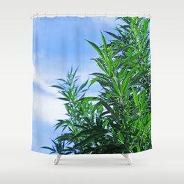 CannaBliss Shower Curtain