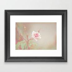 Little Pink Rose Framed Art Print