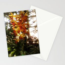 Dreamy Flower Stationery Cards