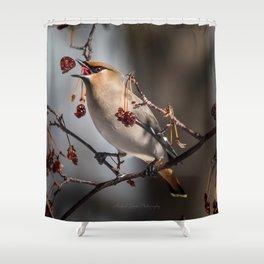 Cedar Waxwing Berry Flip Shower Curtain