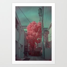 Infrapink 01 Art Print