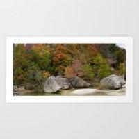 Lost Maples Pano Art Print
