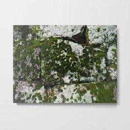 Mossy Temple Wall 2 Metal Print