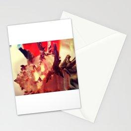 Murex Endivia 1 Stationery Cards