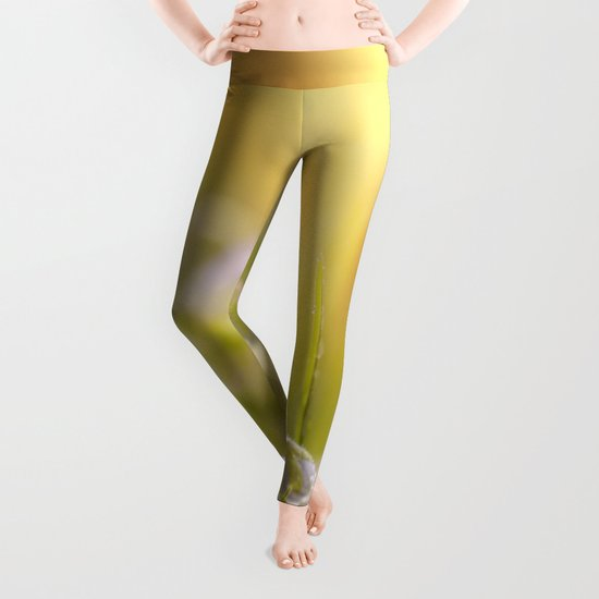 Daisy and court Leggings
