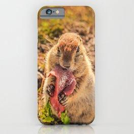 Good food makes good mood iPhone Case