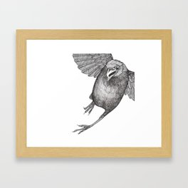 Crow Caws at You While Flying Away Framed Art Print