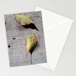 A Gift on My Morning Walk 001 Stationery Cards