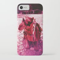 camel iPhone & iPod Cases featuring Camel by Cass Burton
