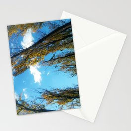 Beijing Photography 4 Stationery Cards