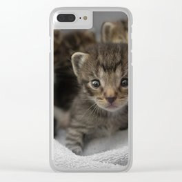 Photo of a group of cuddly kittens Clear iPhone Case