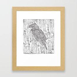 Koop Kookaburra Framed Art Print
