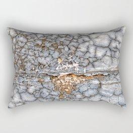 013 Rectangular Pillow