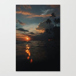 Earth Wind and Fyah Canvas Print