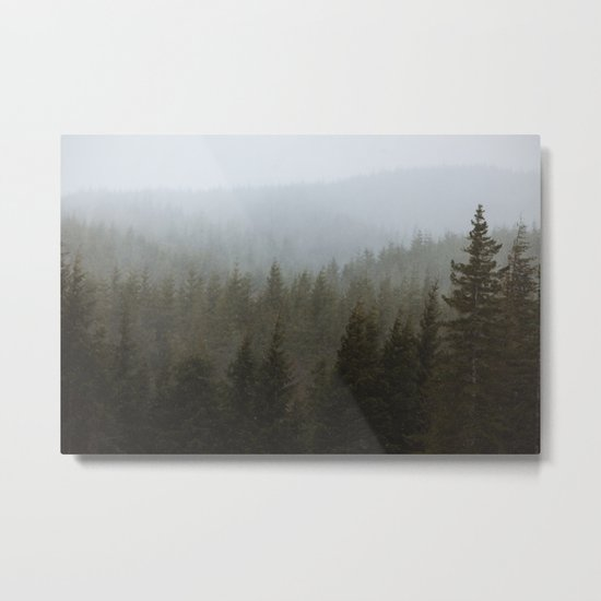 Snowy Forks Forest Metal Print