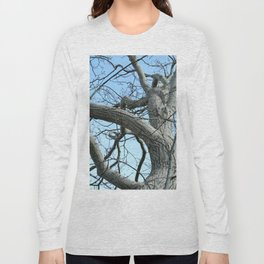 Winter Tree in Beverly, MA Long Sleeve T-shirt