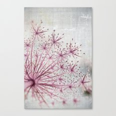 Vintage Raspberry Pink and Paris Gray Botanical Queen Anne's Lace Wildflower Canvas Print