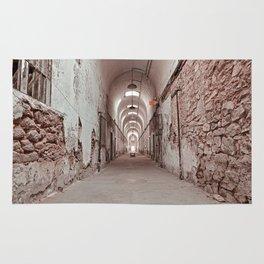 Crimson Prison Corridor Rug