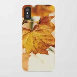 A Fall Like This iPhone Case