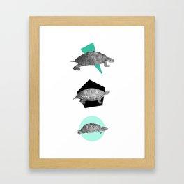 Three Old Turtles Framed Art Print