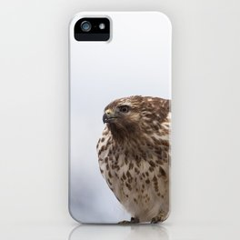 Backyard Hawk iPhone Case