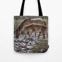 Salt River Mare and Her Colt, No. 2 Tote Bag