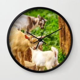 Baby Goats Playing Wall Clock
