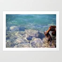 Hawaiian Harbor Waters Art Print