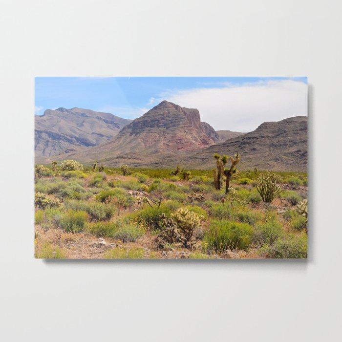 Painted Desert - III Metal Print