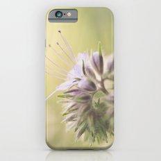 Phacelia iPhone 6s Slim Case