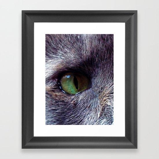 Cat Eye Framed Art Print