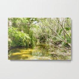 River bend Sauce Viejo Metal Print