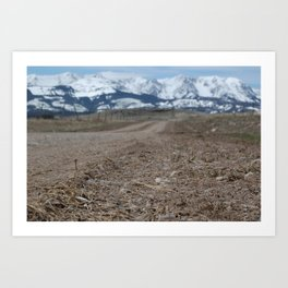 Bridger Mountains Art Print