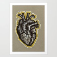 anatomical heart Art Prints featuring Anatomical Heart by Micaela Payne
