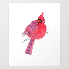 Glancing Cardinal Art Print