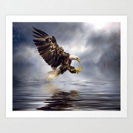 Bald Eagle swooping Art Print
