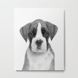 German Boxer Puppy Metal Print