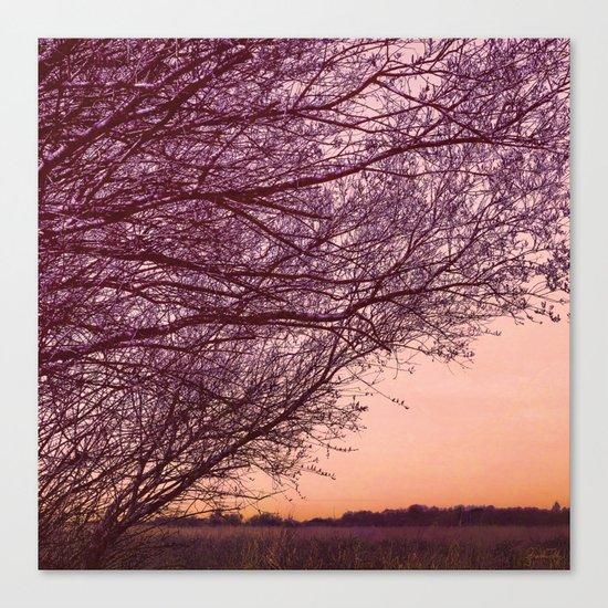Purple Tree, Coral Orange Sky Canvas Print