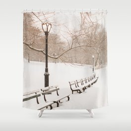 Snowing in Central Park Shower Curtain