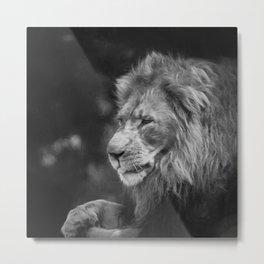 King Of The Jungle (B&W digital painting) Metal Print