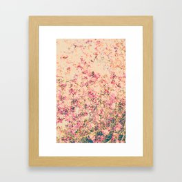 Vintage Pink Crabapple Tree Blossoms in the Sun Framed Art Print